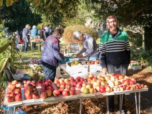 AppleDay-42