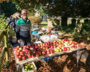 AppleDay-44